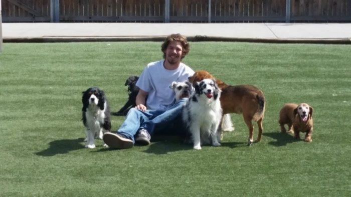 Aurora Dog Daycare