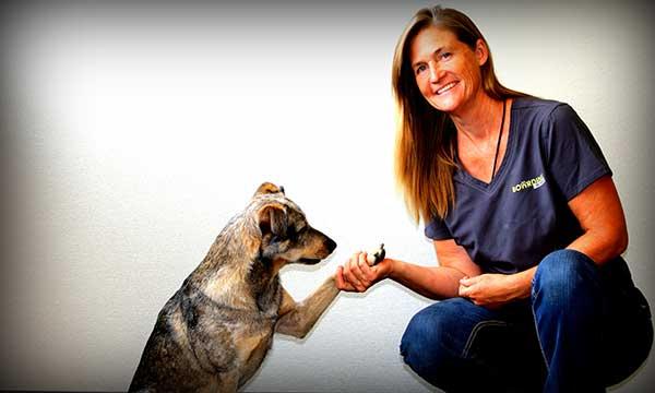 dog trainer Victoria Baker aurora colorado